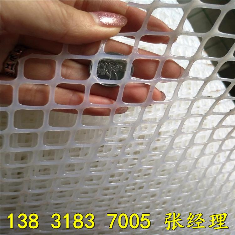 3852571137_1109553934.jpg_.webp_副本