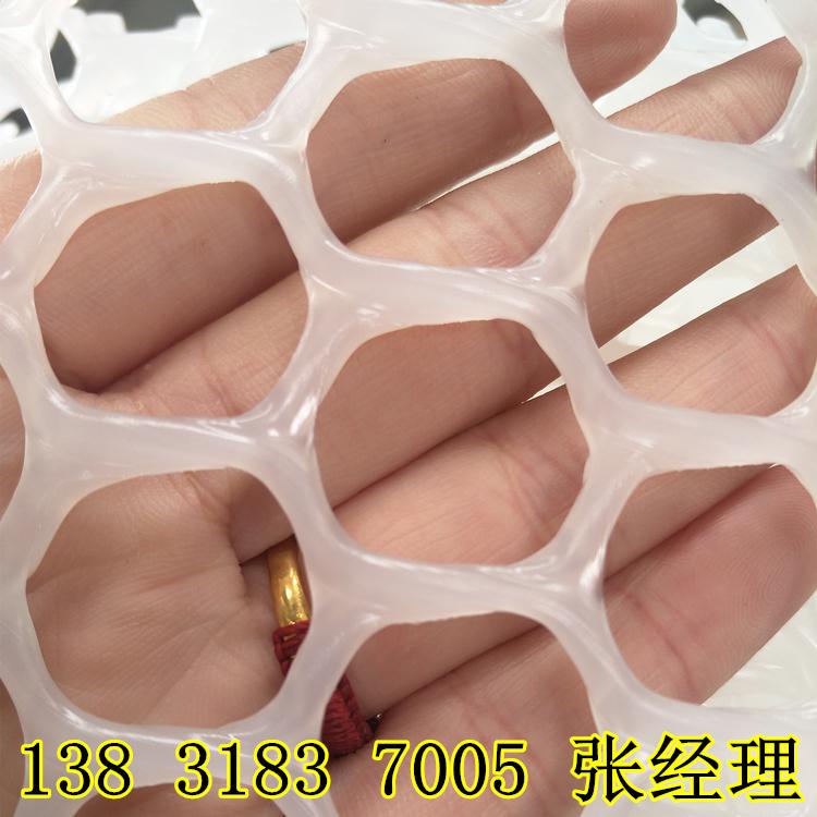 8311501816356.jpg
